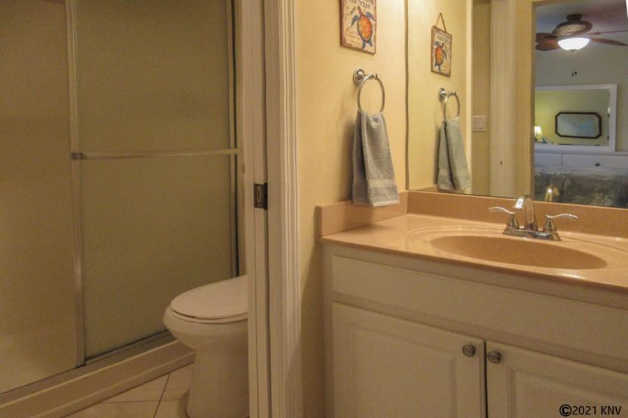 Master Bath with separate vanity