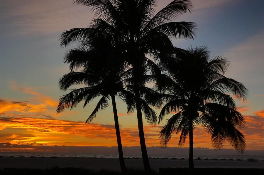 World Class Sunsets at Sandarac 109B