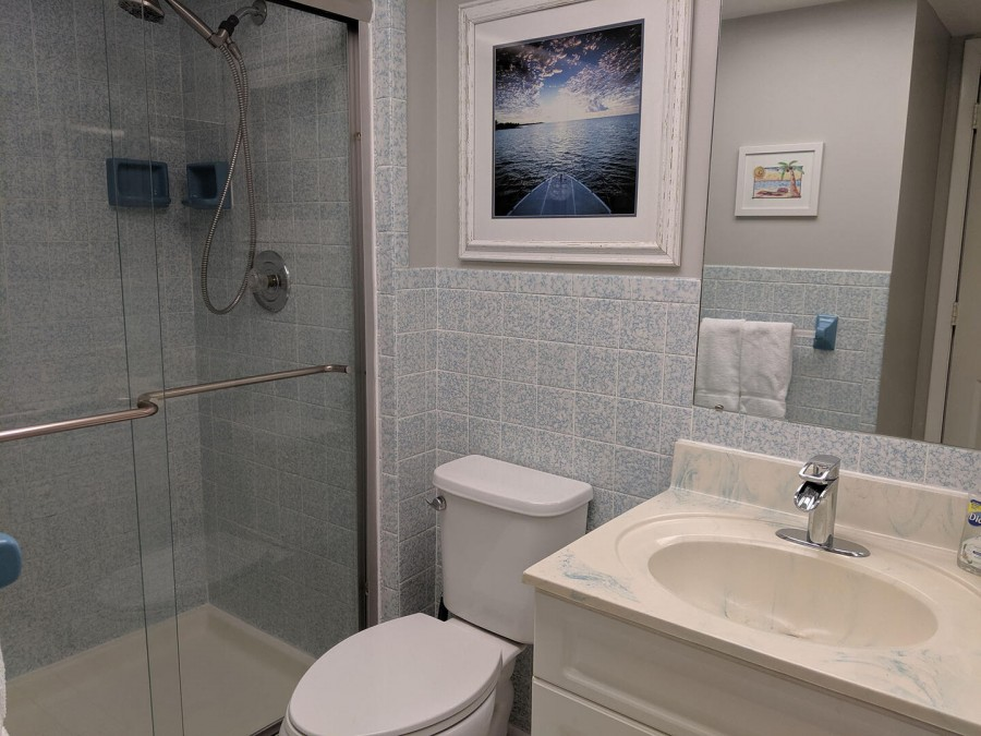 Guest bath has a walk-in shower and large overhead lights.