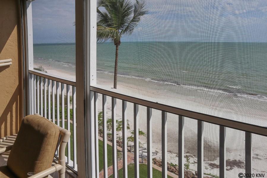 Beautiful view of the Gulf