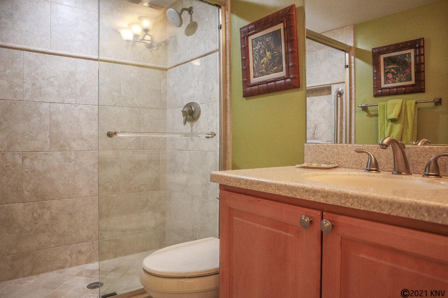 Newly Remodeled Guest Bath