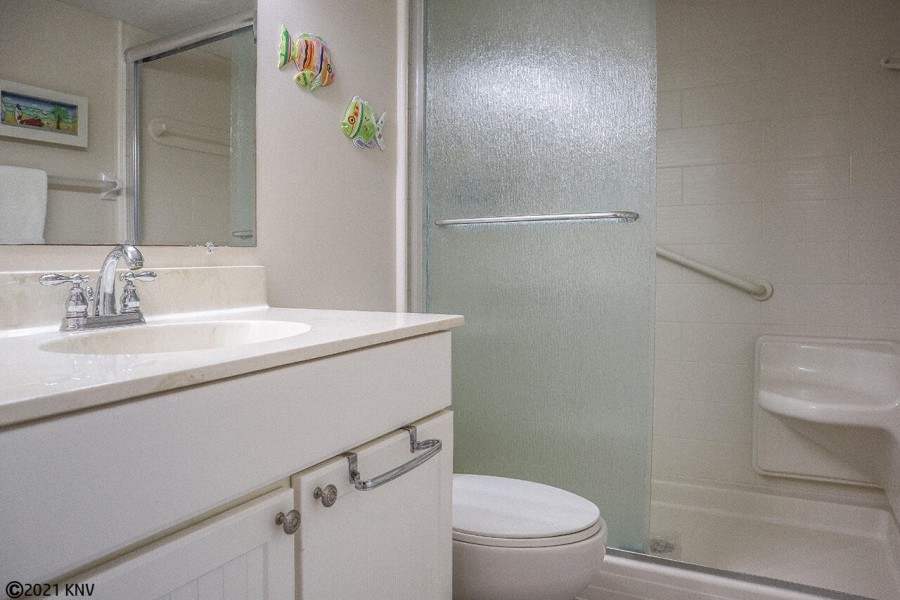 Guest Bath has walk in shower