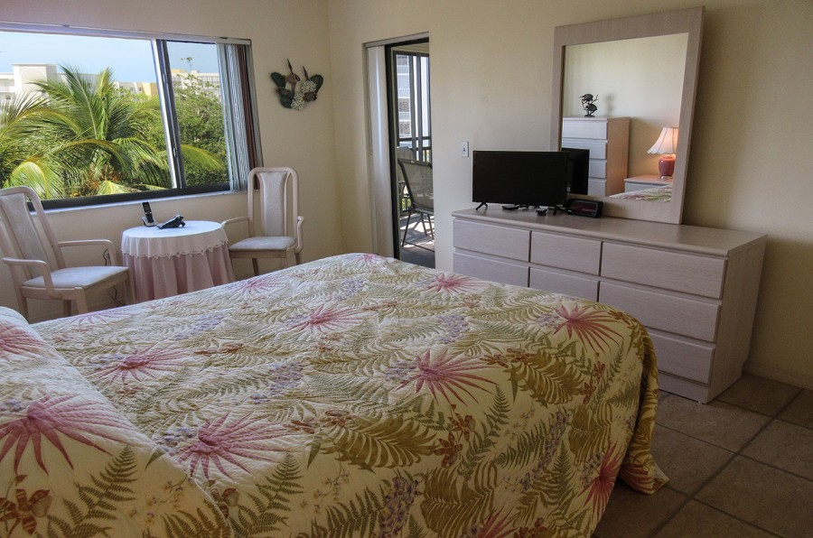 Harbour Pointe 524N - Master Bedroom has beautiful views and its own TV